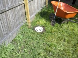 bucket sunk into ground near wheelbarrow