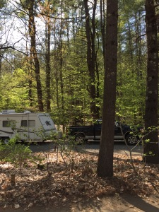 truck and camper in the woods