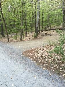 empty campsites