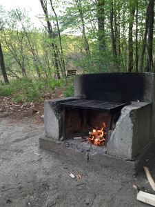 a small camp fire