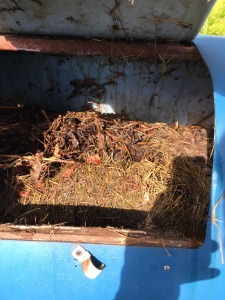 compost in a tumbler