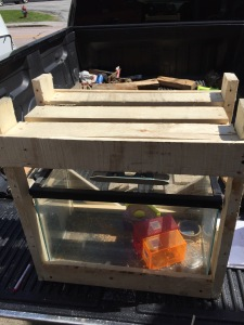 wooden framed fish tank with shelf above