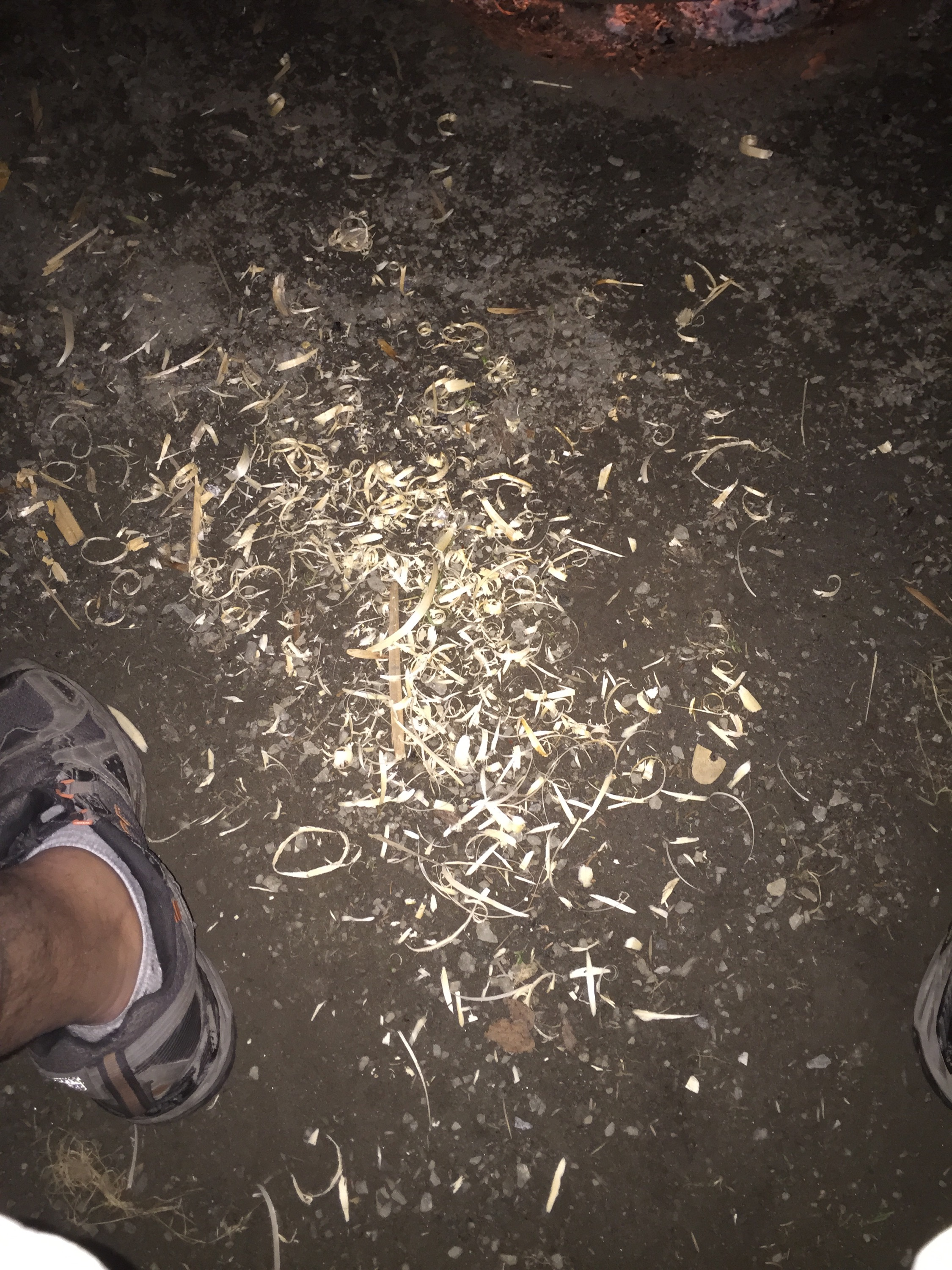 wood shavings on the ground