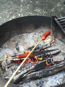 hot dogs roasting on a campfire